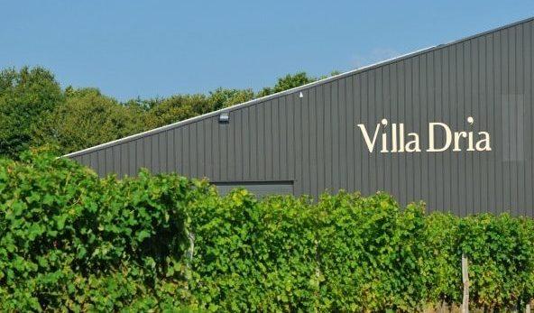domaine villa dria, vignoble des côtes de gascogne