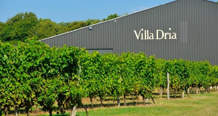 domaine villa dria côtes de Gascogne