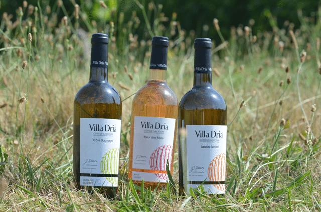 Vins blancs secs moelleux et rosé